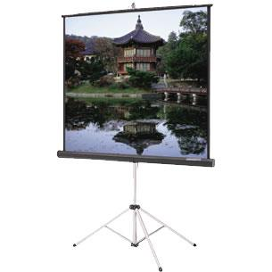 Where to find 4  PROJECTOR SCREEN in Tyler
