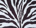 Rental store for ZEBRA PRINT in Tyler TX