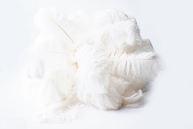 Where to find WHITE OSTRICH FEATHER CENTERPIECE in Tyler