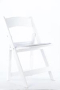 Rental store for WHITE GARDEN CHAIR in Tyler TX