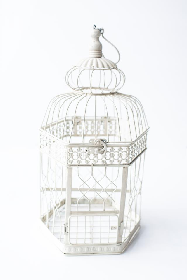 Where to find LARGE CREAM HEX METAL BIRDCAGE in Tyler