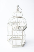 Rental store for LARGE CREAM HEX METAL BIRDCAGE in Tyler TX