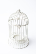 Rental store for 12 X7  ANTIQUE WHITE METAL BIRDCAGE in Tyler TX