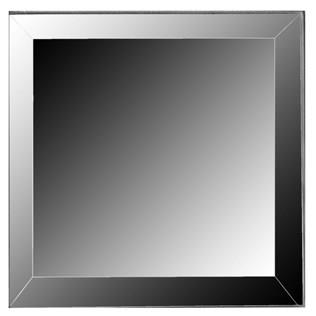 Where to find 12  X 12  BEVELED MIRROR in Tyler